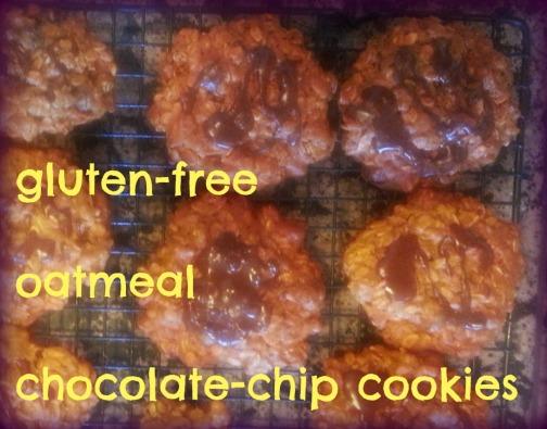 gf chocolate oatmeal cokies