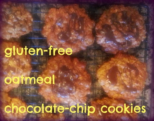 gf chocolate oatmeal cokies
