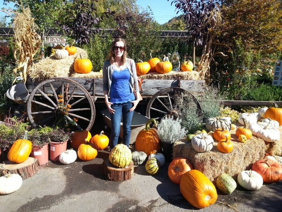 me pumpkin patch