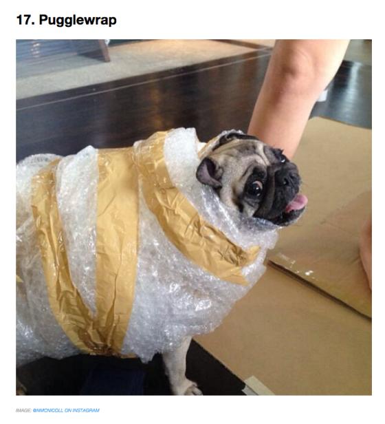 pugglewrap