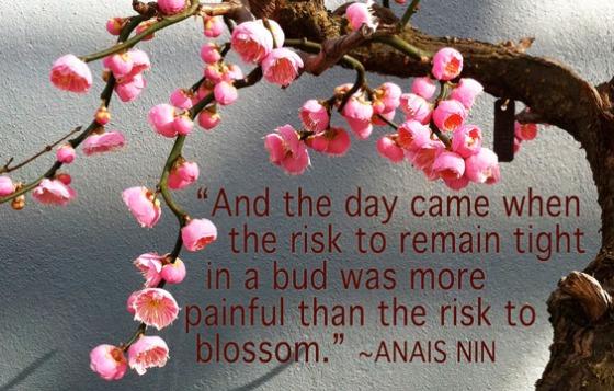 Blossom quote